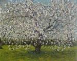 cerisierenfleurs.jpg